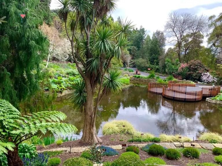 Hobart Botanical Gardens in Spring