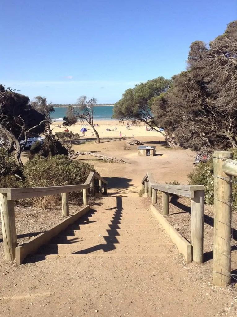 torquay trail Snazzy Trips
