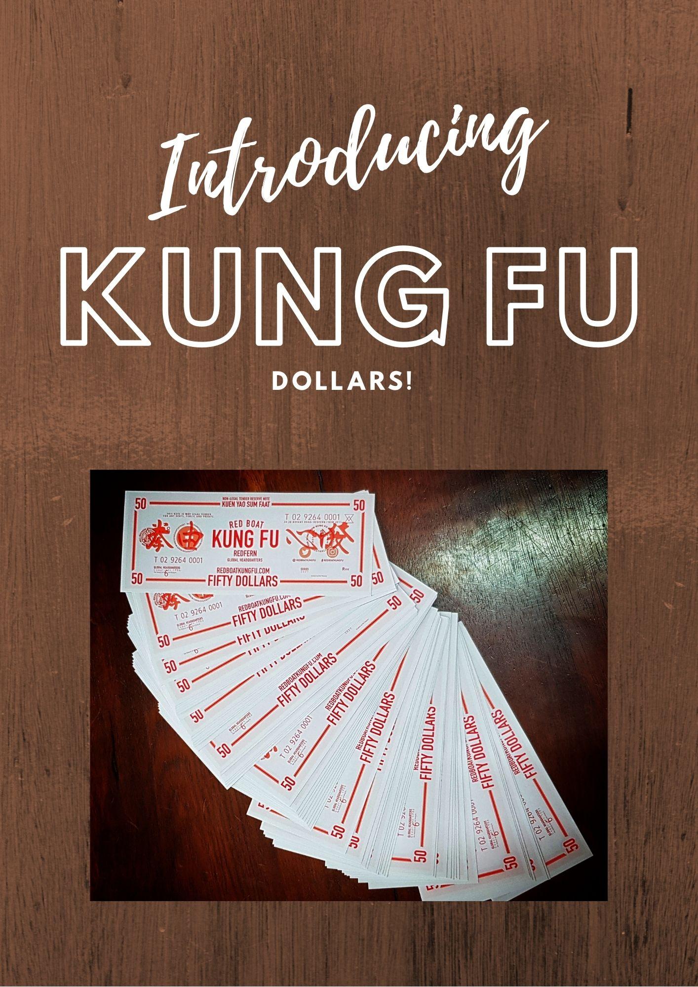 kung_fu_dollars.jpg