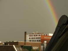 Alkmaar - City