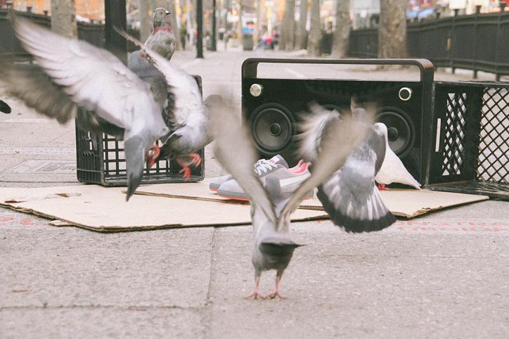 "Photo03 - Staple x PUMA Suede ""Pigeon"" 日本での発売が決定"