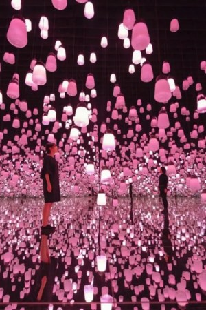 Teamlab 2019 march-may Interactive Digital Installation