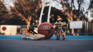 """【3/2】アトモス x ナイキ レブロン16 サファリ / Nike LeBron 16 Low """"Safari"""" CI3358-800"""