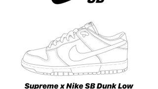 【2019FW】シュプリーム x ナイキSB ダンクLow / Supreme x Nike SB Dunk Low 2019FW