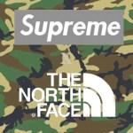 【噂】SUPREME x THE NORTH FACE 11月19日発売予定で、今年はカモフラか。更にvisvimコラボも?