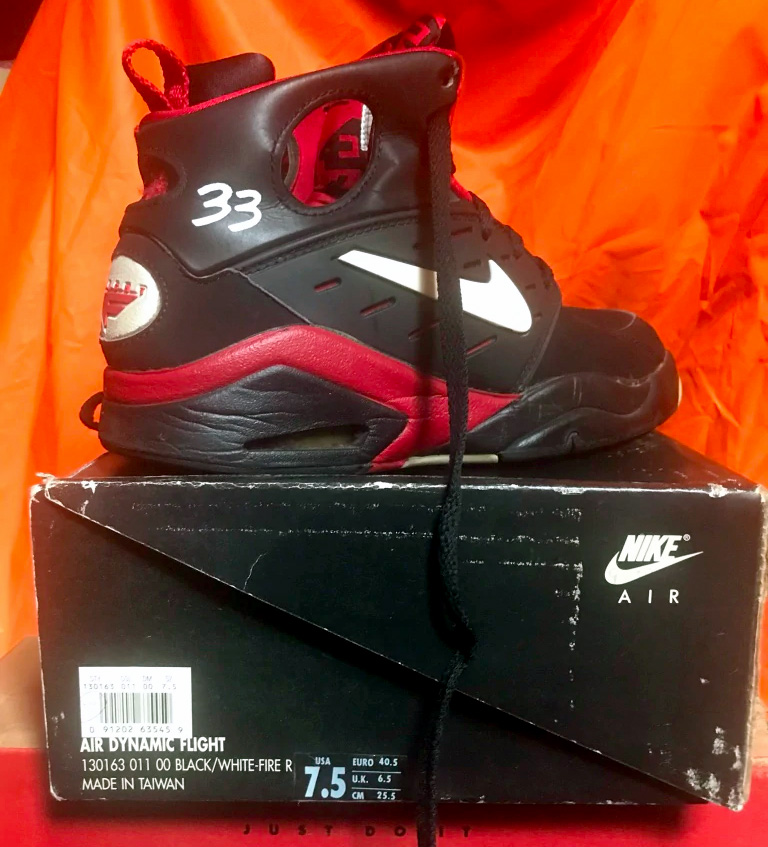 Scottie Pippen Nike Air Dynamic Flight PE