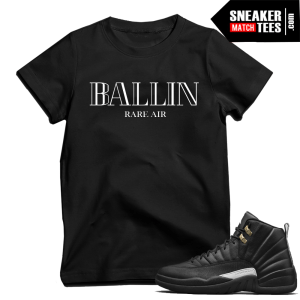 Tshirs match Air Jordan 12 the Master
