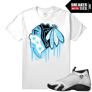 Match Jordan 14 Oxidized T shirts
