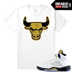 Jordan 5 Olympic Shirt