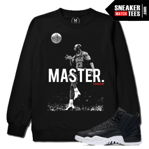 Nylon 12 Jordan Retro Crewneck Match