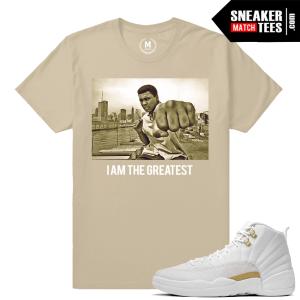 Sneaker Tees Match Jordan 12 OVOs