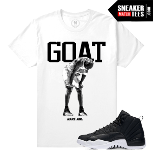 T shirt Match Neoprene Jordan 12