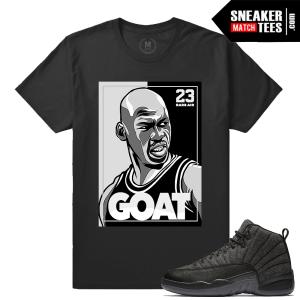 Match Wool 12 Jordan T shirts