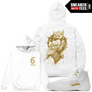 Matching Hoodie OVO 12 Jordans