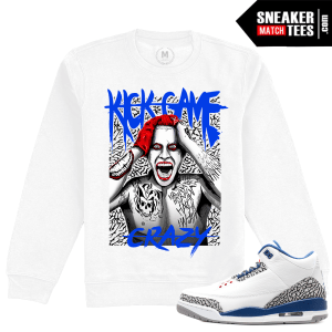 Air Jordan Crewneck True Blue 3