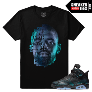 All Star 6s Chameleon Irving t shirt