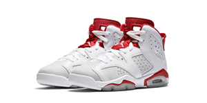 Air Jordan 6 Alternate Match Sneaker Tee Shirts