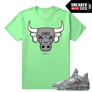 Kaws Jordan 4 T shirt