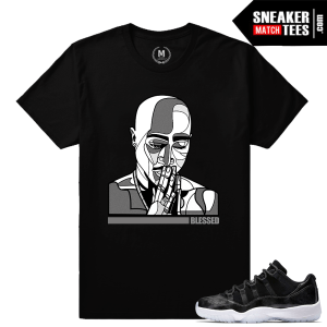 Air Jordan 11 Barons Sneaker Match Tees