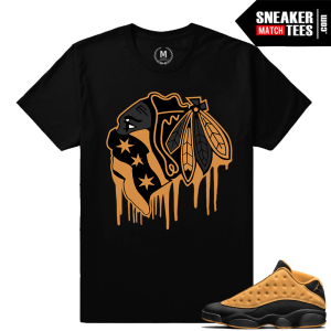 Chutney 13 Air Jordan Match Tee shirt