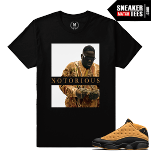 Jordan 13 Low Chutney Match Sneaker t shirt