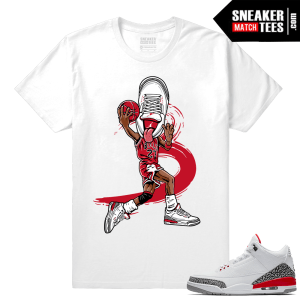 Sneakerhead Jordan 3