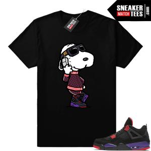 Air Jordan 4 Raptors shirt