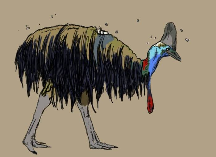 Carcassowary by Amanda Wood