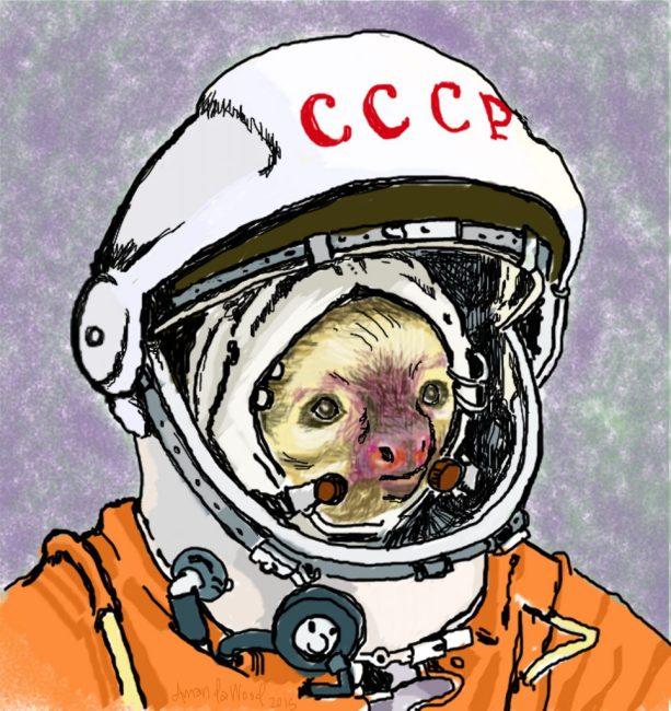 Cosmonaut Sloth by Amanda Wood