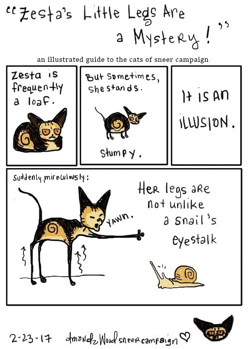 part 1 about zesta's legs