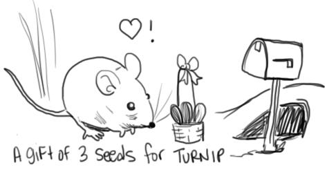 hi turnip