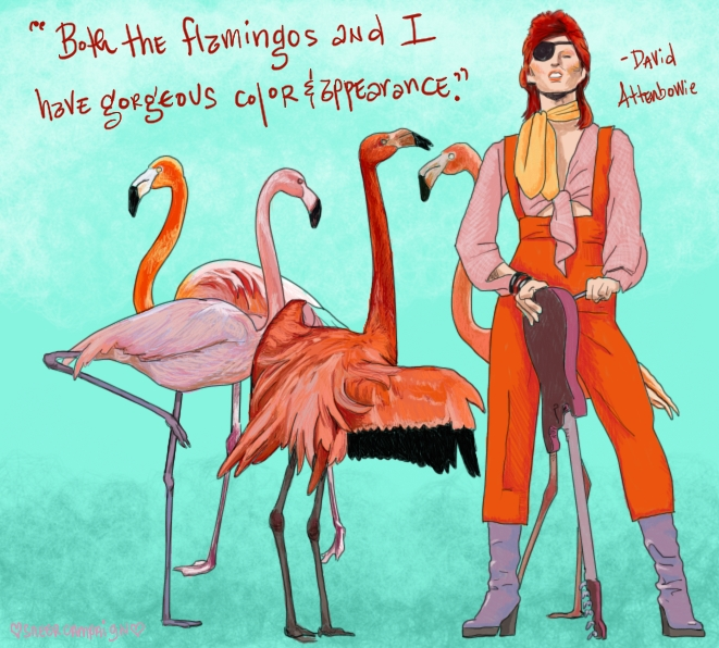 """David Attenbowie, who just looks like David Bowie but in other clothes, is stood sneering at the viewer. He is wearing oranges and pinks, has dark red mullet hair, and a black eye patch. Four flamingos surround him, looking like unique individuals because each flamingo has variations in their color and plumage.  The words say """"Both the flamingos and I have gorgeous color and appearance."""" A quote from David Attenbowie.  The background is a lovely aqua."""