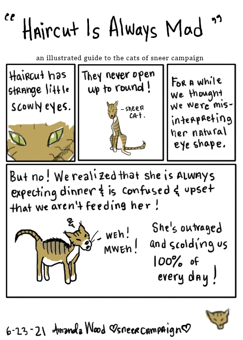"""This is a comic about Haircut the Cat. It is titled """"Haircut is always mad."""" In panel one, it is a close up of her angular squinted eyes. The words say """"haircut has strange little scowly eyes."""" The next panel, there is a drawing of her farther back, looking very disapproving. The words say """"they never open up to round!"""" There is an arrow pointing to her and she is labeled Sneer Cat. The third panel is only words. They say """"for a while we thought we were misinterpreting her natural eye shape.""""  The large panel at the bottom explains: """"But no! We realized that she is always expecting dinner and is confused and upset that we aren't feeding her! She is outraged and scolding us 100% of every day!"""" Accompanying this is a drawing of her looking angry and chubby and saying """"weh! mweh!"""" which is kind of how her meows go."""
