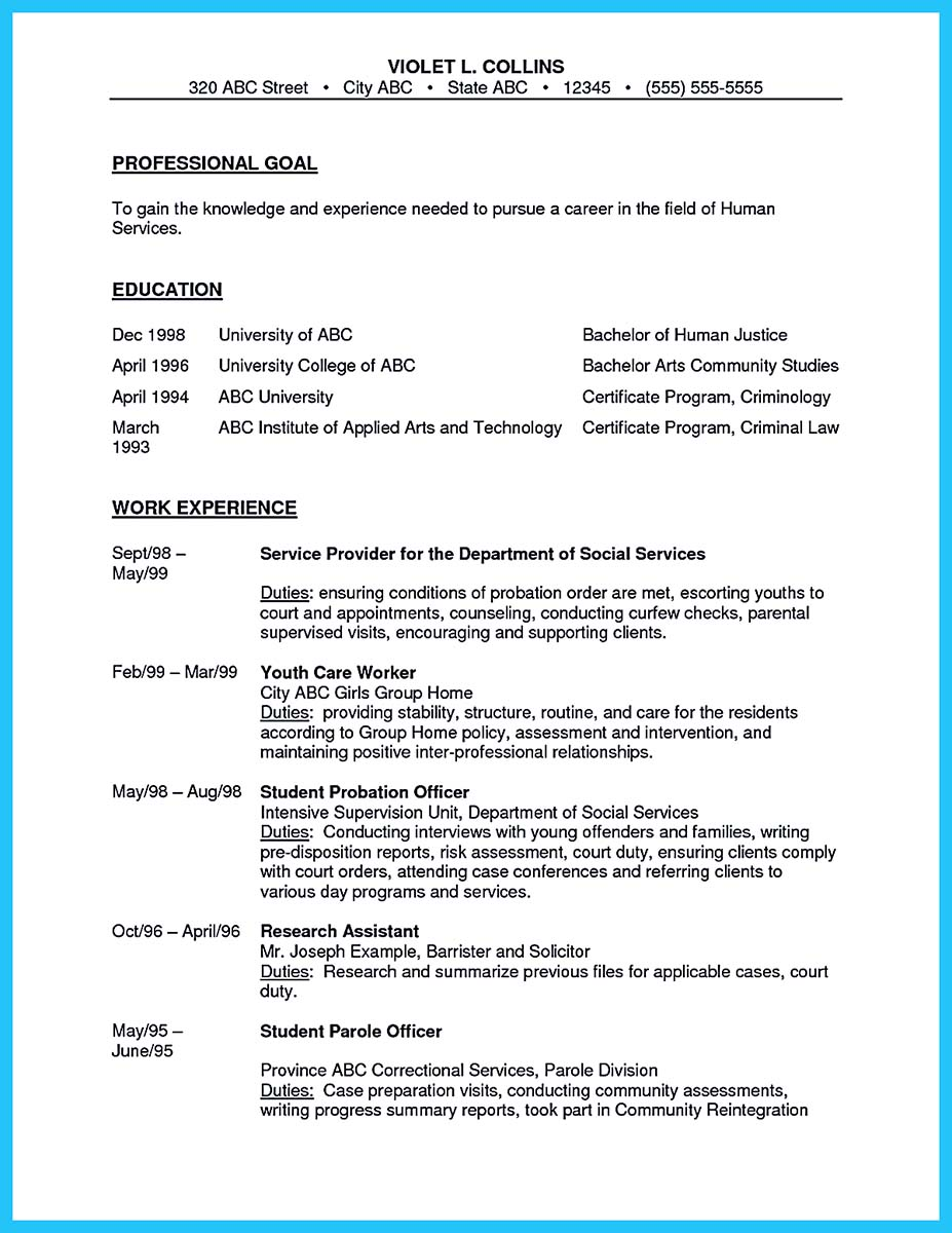 Corrections Officer Resume Examples Skill Summary