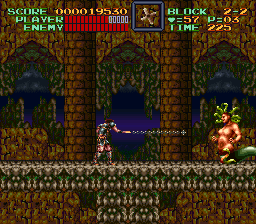 Super Castlevania IV 12