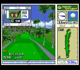 True Golf Classics - Waialae Country Club 05
