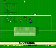 World League Soccer 09