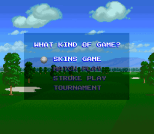 The Irem Skins Game 02