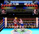 TKO Super Championship Boxing 15
