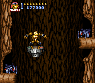 Battletoads in Battlemaniacs 12