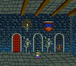 Mario Is Missing 17