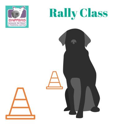 Rally Class