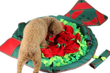 SmellyMatty Treat Puzzle Dog Toy