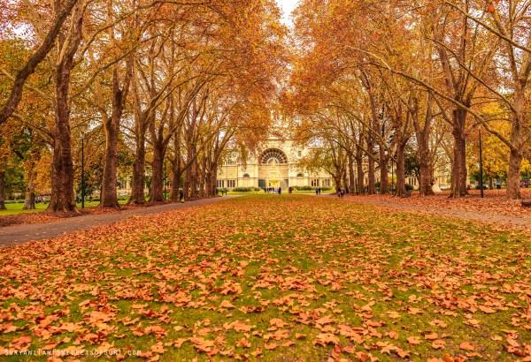 Carlton Garden, Melbourne, Vic, Australia