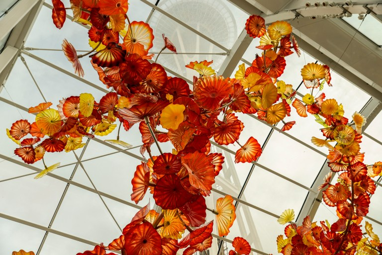 Chihuly Garden and Glass Exhibit 11
