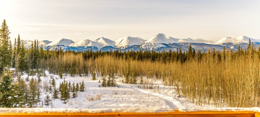 Why you should visit Yukon in winter