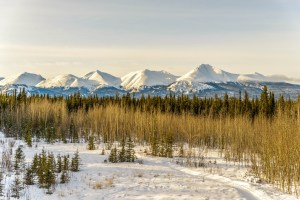 Things to do in Yukon Canada