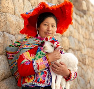 Alpaca Andean Lady from South of Cusco Peru