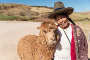 Viewing Site near Urubamba Sacred Valley Peru – Quechua Indian lady with her llamas and alpaca