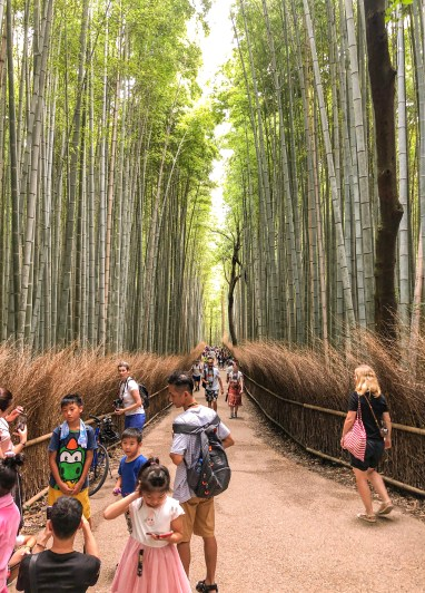 Arashiyama, well-known for its gorgeous bamboo forests